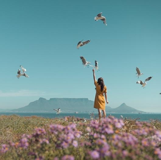 meditación para liberar el sufrimiento